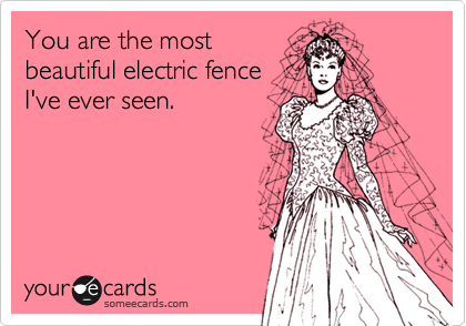 You are the most beautiful electric fence I've ever seen.