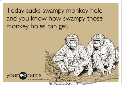 Today sucks swampy monkey hole and you know how swampy those monkey holes can get...
