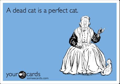 A dead cat is a perfect cat.