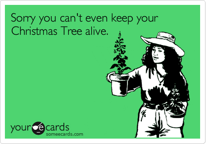 Sorry you can't even keep your Christmas Tree alive.