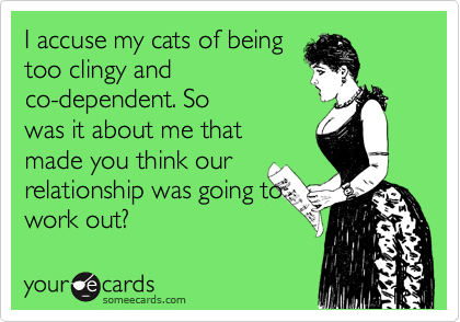 I accuse my cats of being too clingy and co-dependent. So was it about me that made you think our relationship was going to work out?