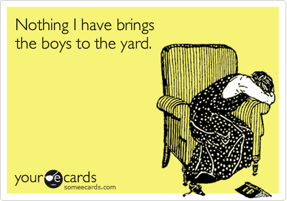 Nothing I have brings the boys to the yard.