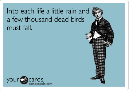 Into each life a little rain and a few thousand dead birds must fall.