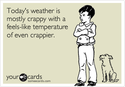 Today's weather is  mostly crappy with a  feels-like temperature of even crappier.