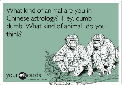 What kind of animal are you in Chinese astrology?  Hey, dumb-dumb. What kind of animal  do you think?