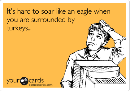 It's hard to soar like an eagle when you are surrounded by turkeys...