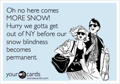 Oh no here comes MORE SNOW! Hurry we gotta get out of NY before our snow blindness becomes permanent.