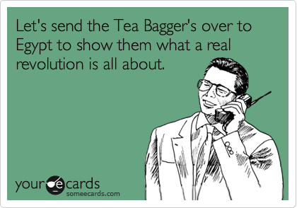 Let's send the Tea Bagger's over to Egypt to show them what a real revolution is all about.