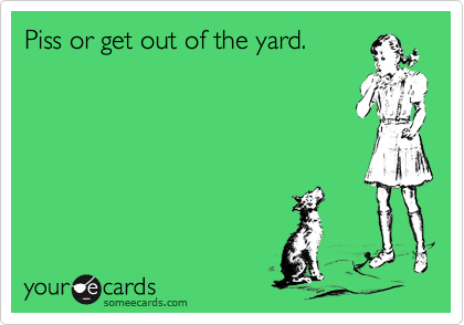 Piss or get out of the yard.