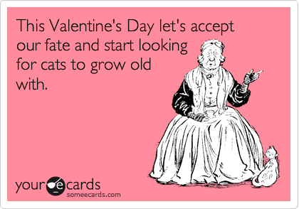 This Valentine's Day let's accept our fate and start looking for cats to grow old with.