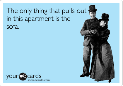 The only thing that pulls out in this apartment is the sofa.