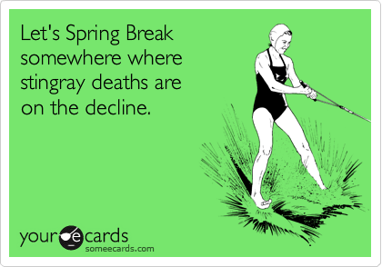 Let's Spring Break  somewhere where stingray deaths are  on the decline.