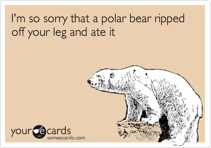 I'm so sorry that a polar bear ripped off your leg and ate it