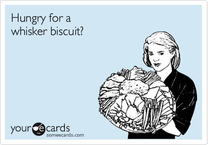 Hungry for a whisker biscuit?