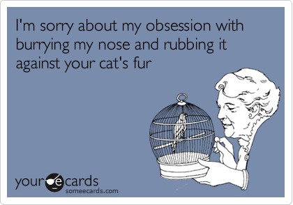 I'm sorry about my obsession with burrying my nose and rubbing it against your cat's fur
