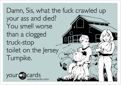 Damn, Sis, what the fuck crawled up your ass and died? You smell worse than a clogged truck-stop toilet on the Jersey  Turnpike.