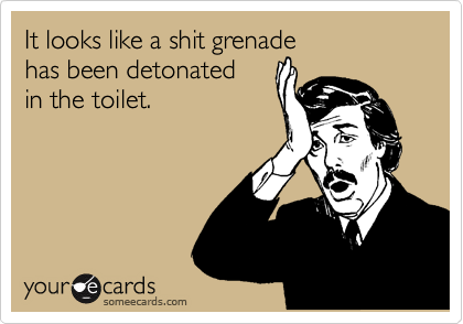 It looks like a shit grenade has been detonated  in the toilet.