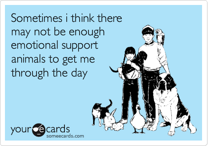 Sometimes i think there may not be enough emotional support animals to get me through the day