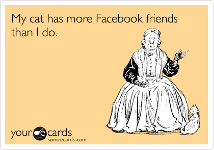 My cat has more Facebook friends than I do.