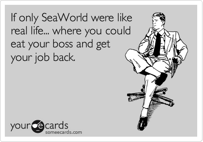 If only SeaWorld were like real life... where you could eat your boss and get your job back.