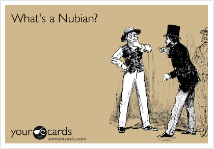 What's a Nubian?
