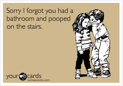 Sorry I forgot you had a bathroom and pooped on the stairs.