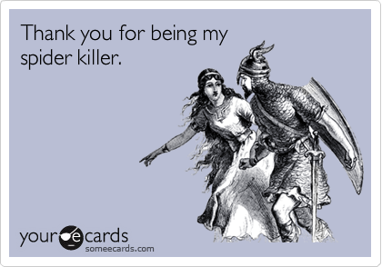 Thank you for being my spider killer.