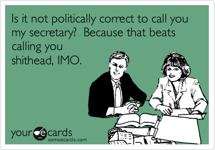 Is it not politically correct to call you my secretary?  Because that beats calling you shithead, IMO.
