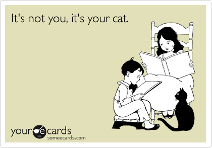 It's not you, it's your cat.