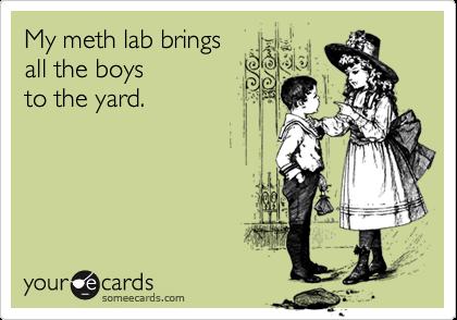My meth lab brings all the boys to the yard.