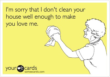I'm sorry that I don't clean your house well enough to make you love me.