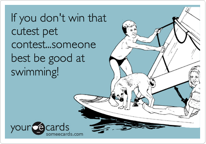 If you don't win that cutest pet contest...someone best be good at swimming!