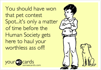 You should have won that pet contest Spot...it's only a matter of time before the Human Society gets here to haul your worthless ass off!