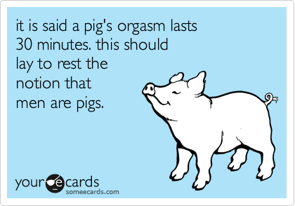 A pigs orgasm lasts for