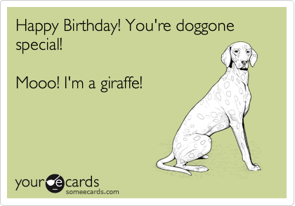 Happy Birthday! You're doggone special!  Mooo! I'm a giraffe!
