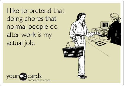 I like to pretend that doing chores that normal people do after work is my actual job.