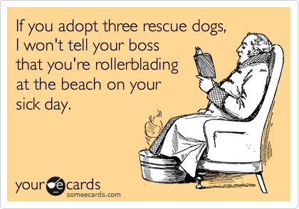 If you adopt three rescue dogs, I won't tell your boss that you're rollerblading at the beach on your sick day.