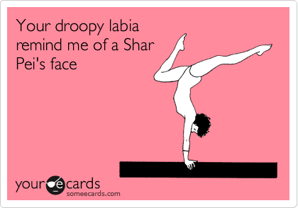 Your droopy labia remind me of a Shar Pei's face