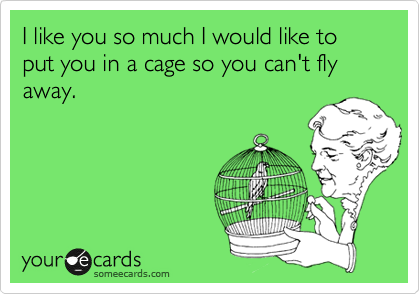 I like you so much I would like to put you in a cage so you can't fly away.
