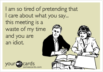 I am so tired of pretending that I care about what you say... this meeting is a  waste of my time  and you are an idiot.