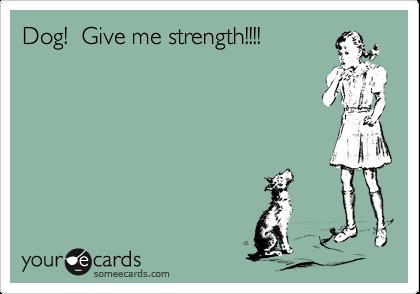 Dog!  Give me strength!!!!