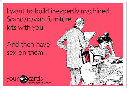 I want to build inexpertly machined Scandanavian furniture kits with you.  And then have sex on them.