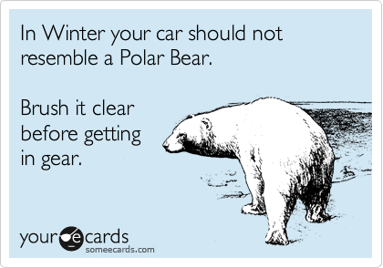 In Winter your car should not resemble a Polar Bear.  Brush it clear before getting in gear.