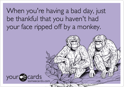When you're having a bad day, just be thankful that you haven't had your face ripped off by a monkey.