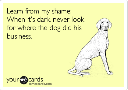 Learn from my shame: When it's dark, never look for where the dog did his business.