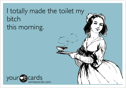 I totally made the toilet my bitch this morning.