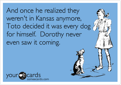 And once he realized they weren't in Kansas anymore, Toto decided it was every dog for himself.  Dorothy never even saw it coming.