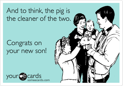 And to think, the pig is the cleaner of the two.   Congrats on your new son!