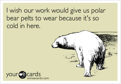 I wish our work would give us polar bear pelts to wear because it's so cold in here.