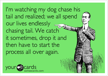 I'm watching my dog chase his tail and realized; we all spend our lives endlessly chasing tail. We catch it sometimes, drop it and then have to start the  process all over again.